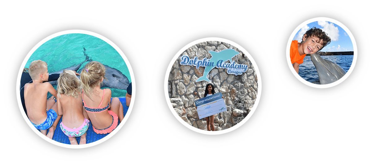 Kinderen genieten en leren tijdens hun tijd op de Dolphin Academy Curaçao.