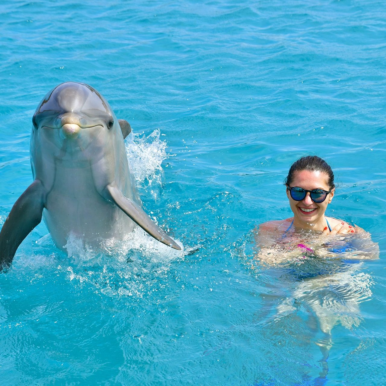 Female tourist and dolphin in the sea, smiling at the camera at the Dolphin Academy Curaçao.