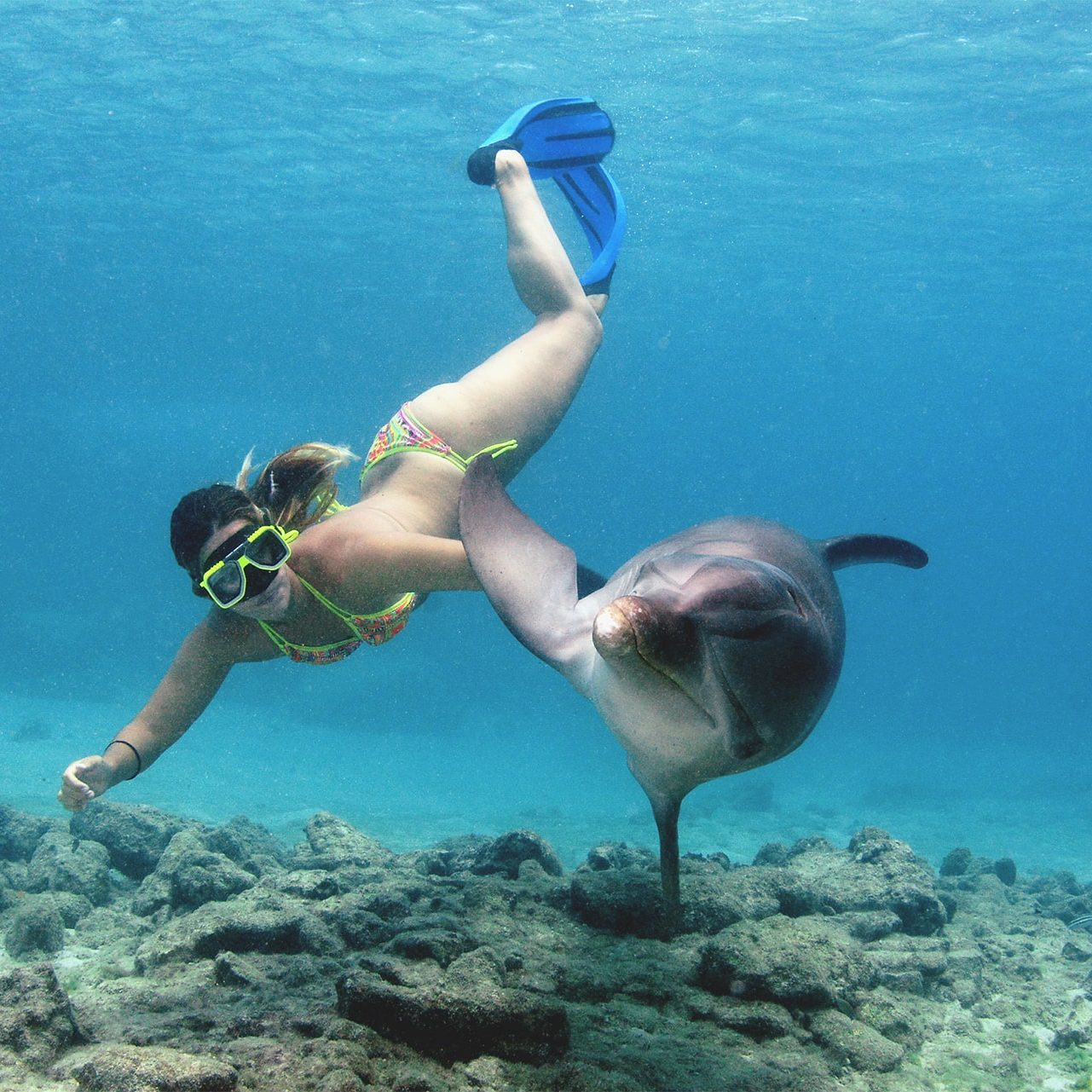 Tourist enjoying her Dolphin snorkel experience at the Dolphin Academy Curaçao.