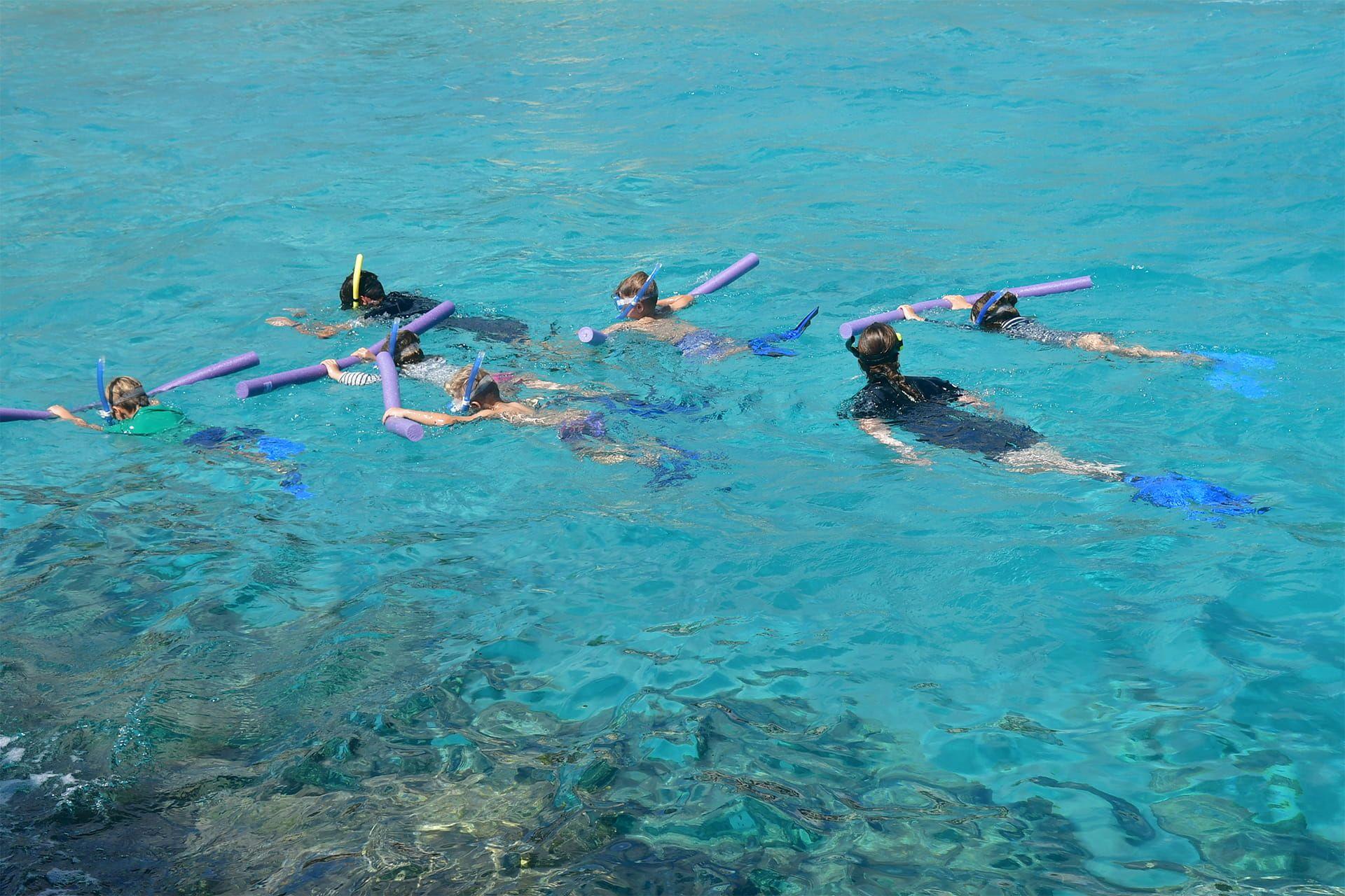 Niños haciendo snorkel durante sus actividades juveniles ofrecidas por la Academia de Delfines de Curaçao.