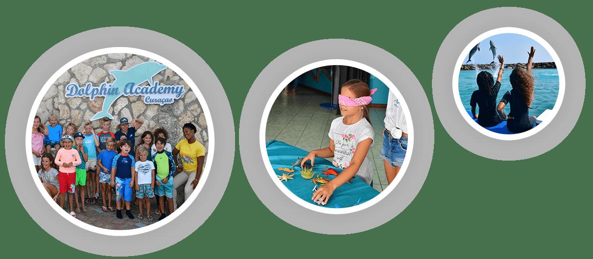 Los niños disfrutan de las actividades juveniles que ofrece la Academia de Delfines de Curaçao.