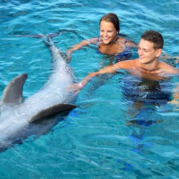 Two tourists swimming with a trained dolphin.