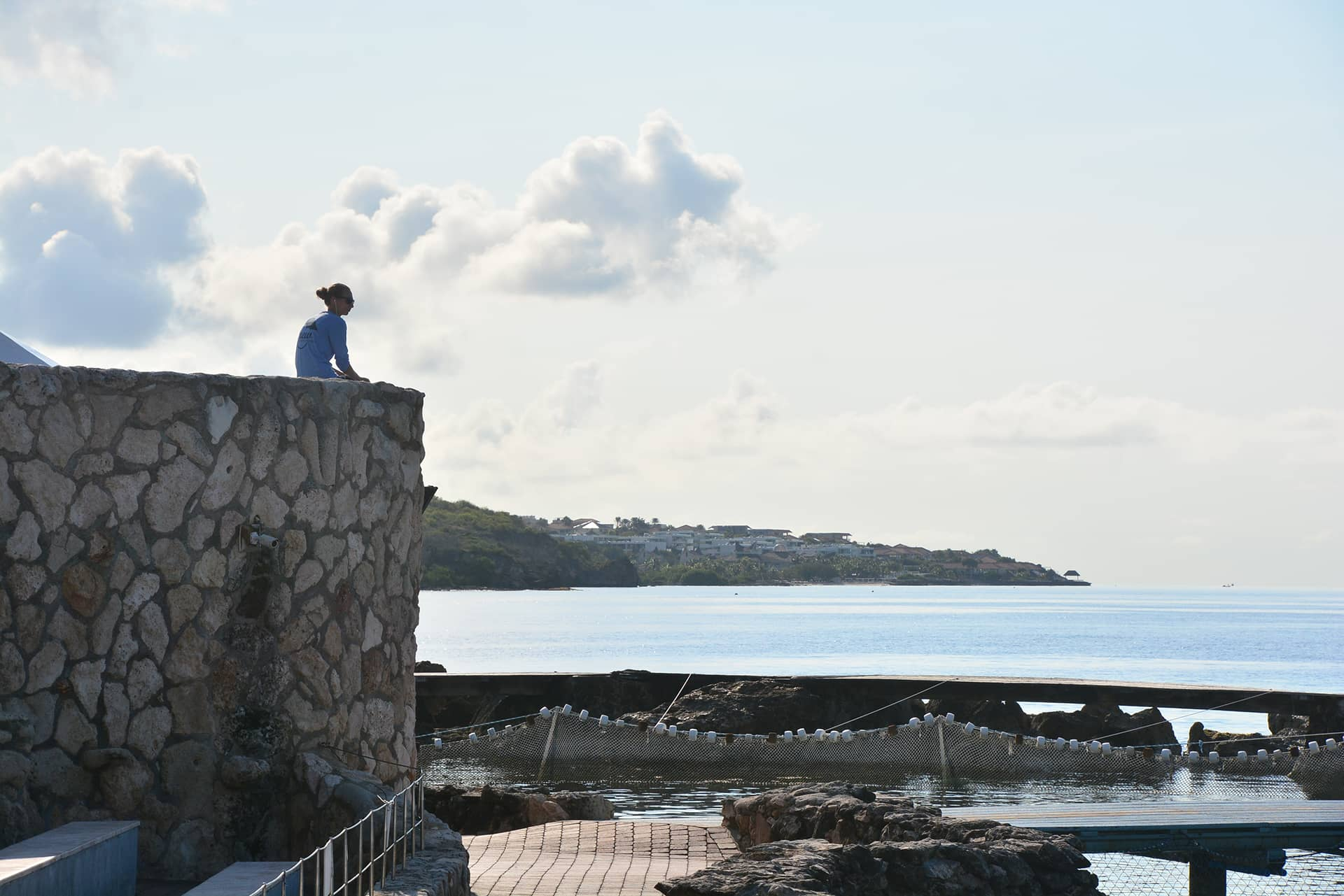 Entrenador sentado y mirando las aguas en la academia de delfines en Curaçao.